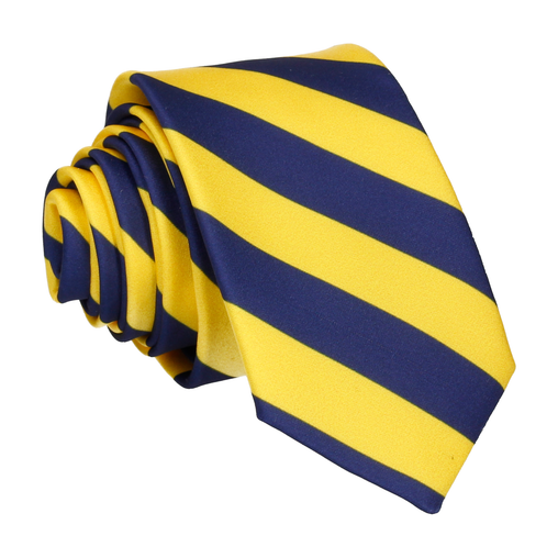 Alpha in Yellow & Navy Blue Tie