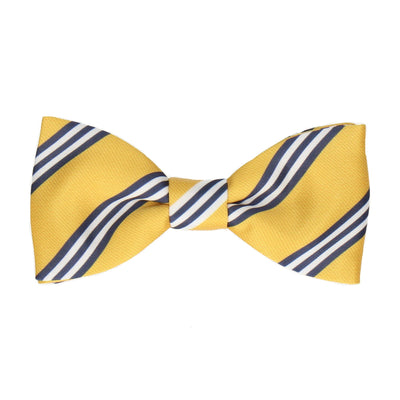 Bravo in Yellow & Navy Blue Bow Tie