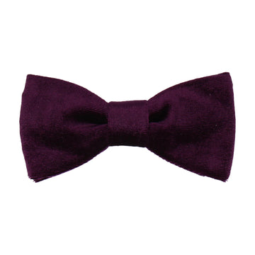 Royal Purple Velvet Bow Tie