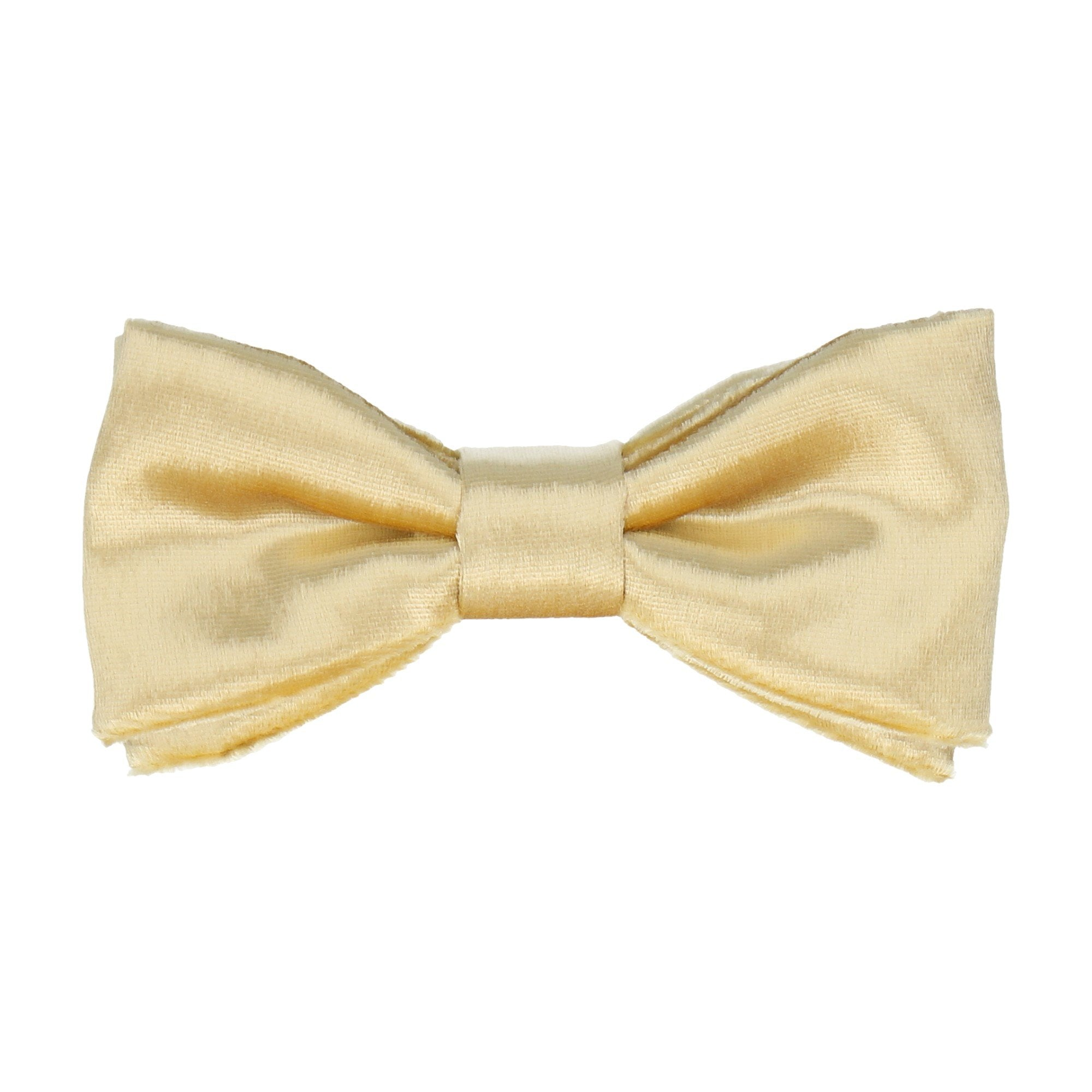 Silk Velvet in Gold Bow Tie