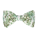 Eucalyptus Green & White Bow Tie