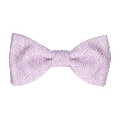 Austin in Lilac Bow Tie