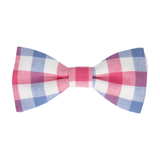 Crewe Pink & Navy Blue Bow Tie