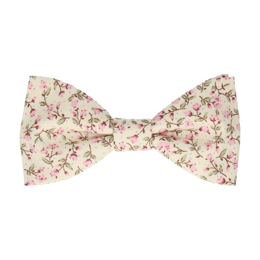 Ashington in Pink Bow Tie
