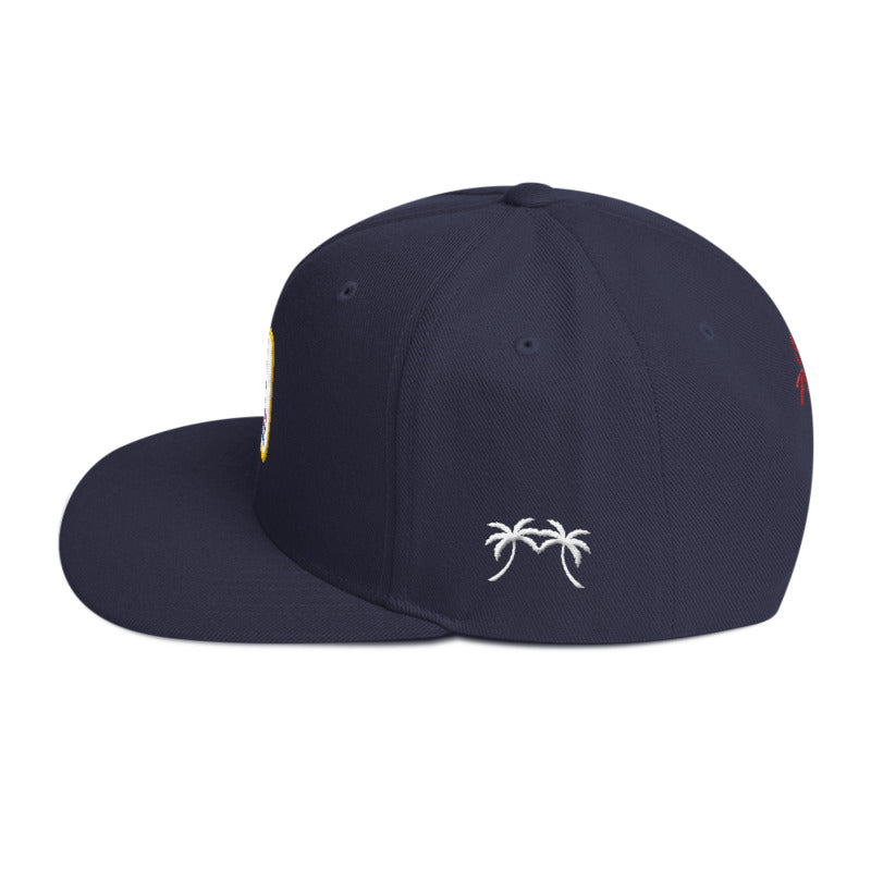 US Miami Mail Snapback - sobepolitics