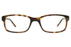 Animal ANIS016 Tortoise Shell Front
