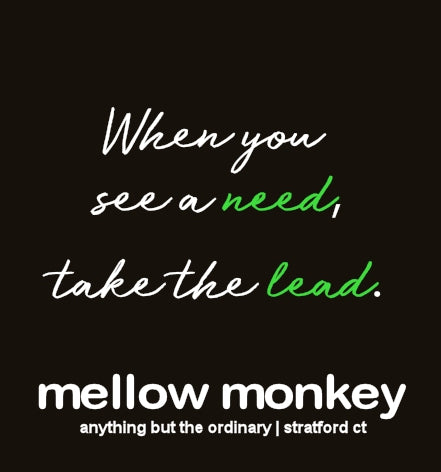 Image result for mellow monkey