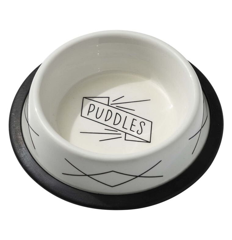Puddles Small Pet Bowl