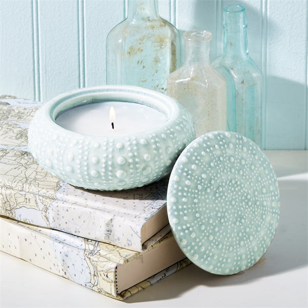 Seafoam Sea Urchin Candle with Ocean Scent 5-in