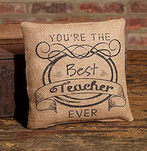 You're The Best Teacher Ever - Small Vintage Decorator Burlap Pillow - 8-in - Mellow Monkey
