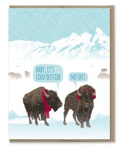 Baby It's Cold Outside - No Shit - Holiday Christmas Greeting Card