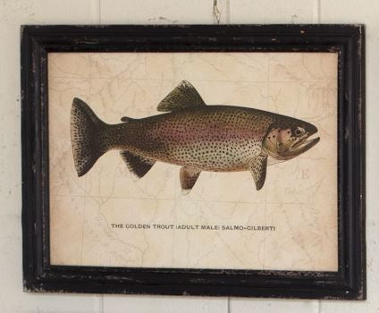 Frame Vintage Trout Print - 20-in