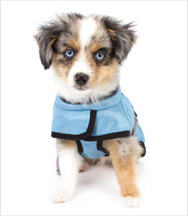Hurtta Dog Cooling Coat - Cool Down Australia - 1