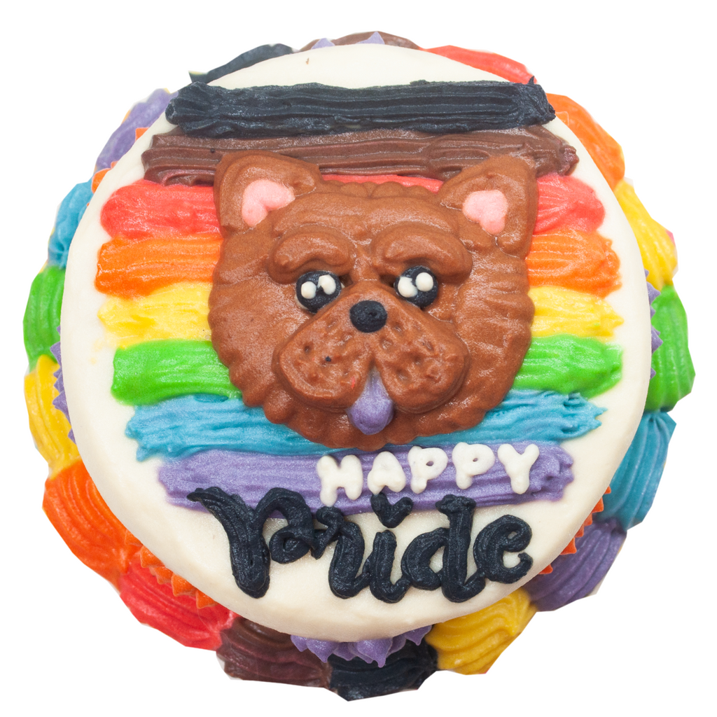 Limited Edition Pride Cake for Pets - 4 inches