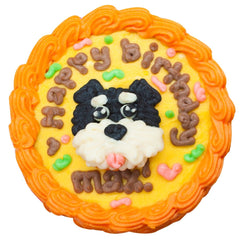 dog face cake for pets