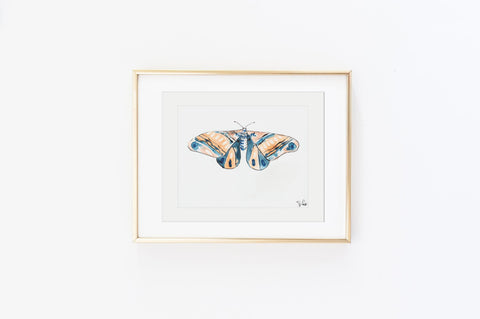 French Apricot Moth - Watercolor Wings Collection
