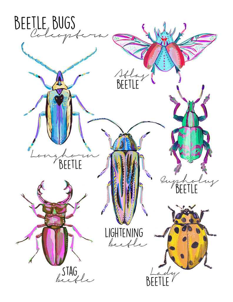 Beetle Print 1 - Little Bugs Collection