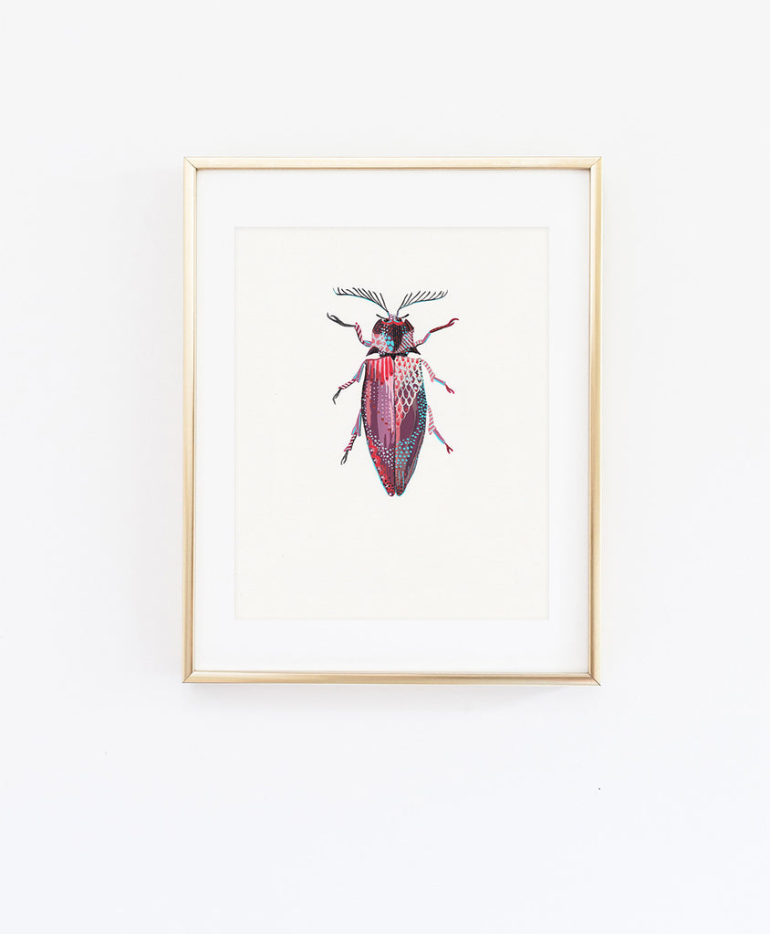Giant Click Beetle 1 - Little Bugs Collection