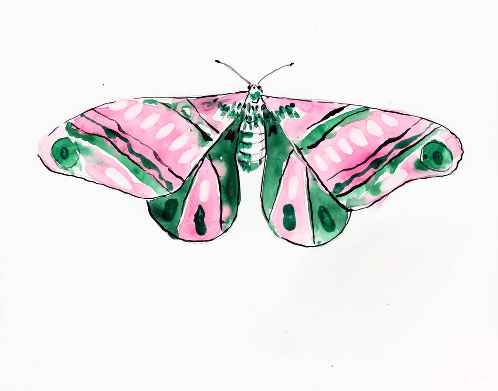 Sap Melon Moth - Watercolor Wings Collection