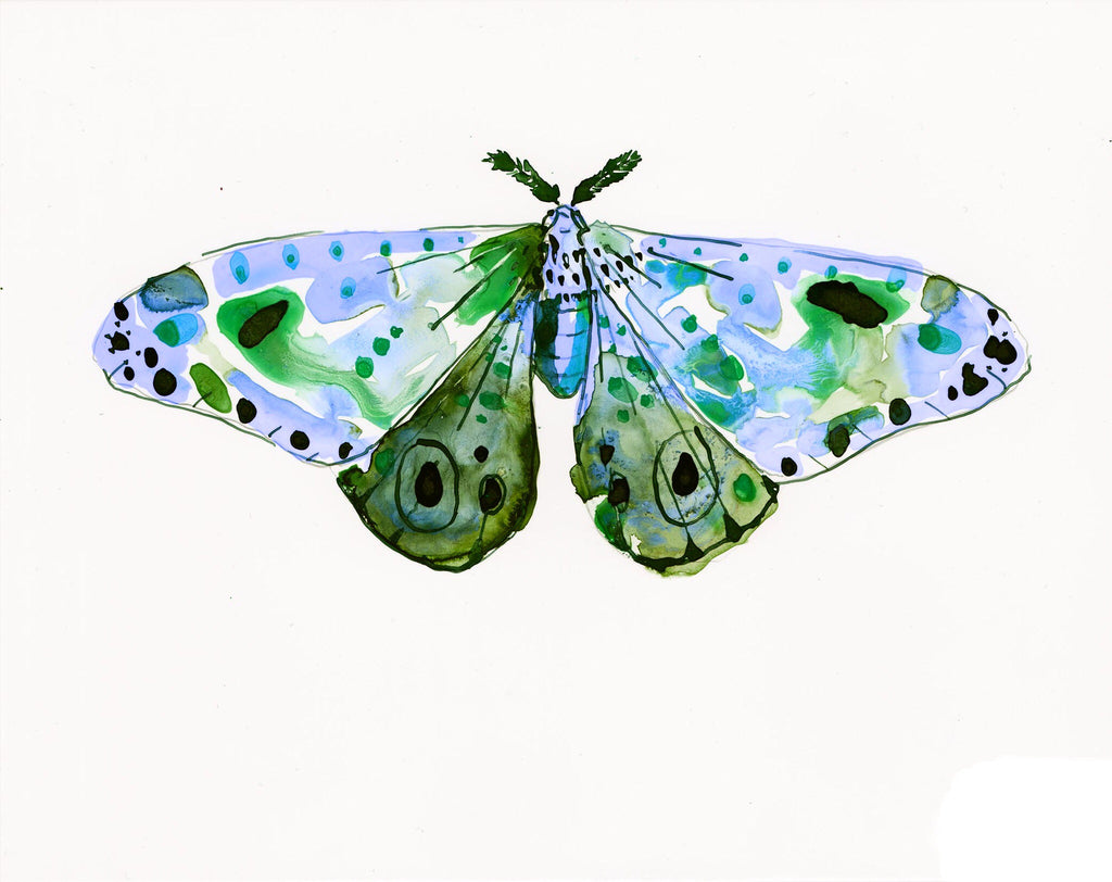 Sea Dawn Moth - Watercolor Wings Collection