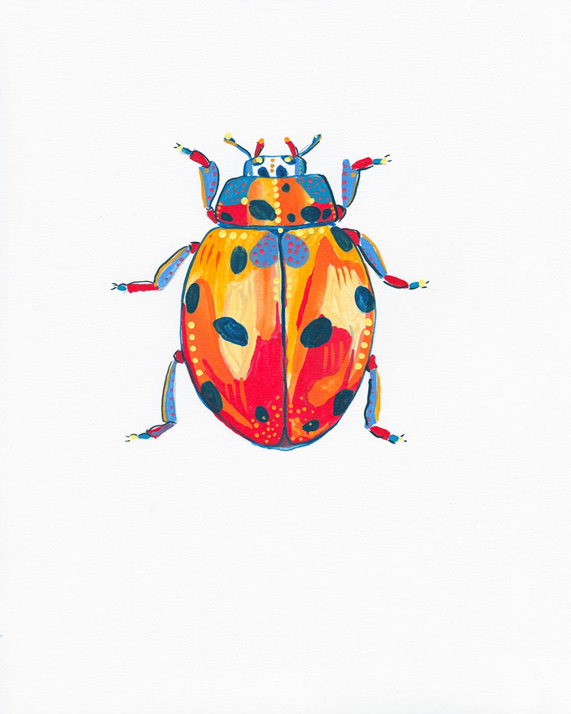 Lady Bug 2 - Little Bugs Collection