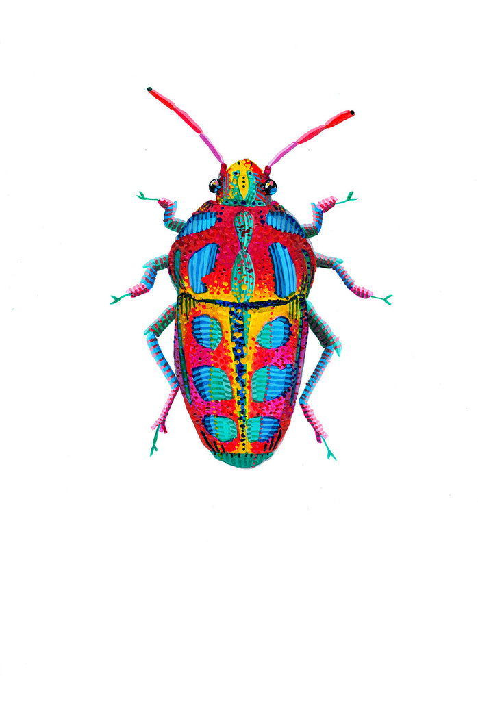 Rainbow Shield Bug 1 - Little Bugs Collection
