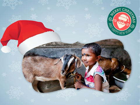 Christmas | Give a Goat