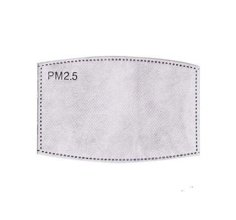 PM2.5 replacement filters - 2 PACK
