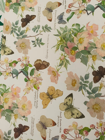 Butterfly Gift Wrap - PEACHES & GREEN