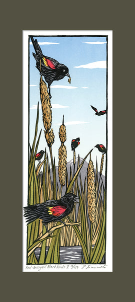 Red-Winged Blackbirds - II