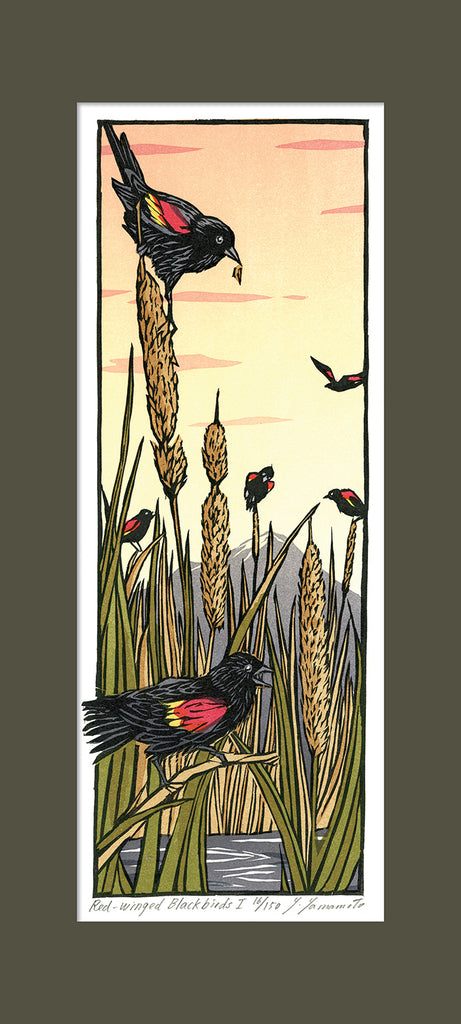 Red-Winged Blackbirds - I