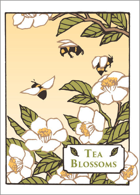 Tea Blossoms