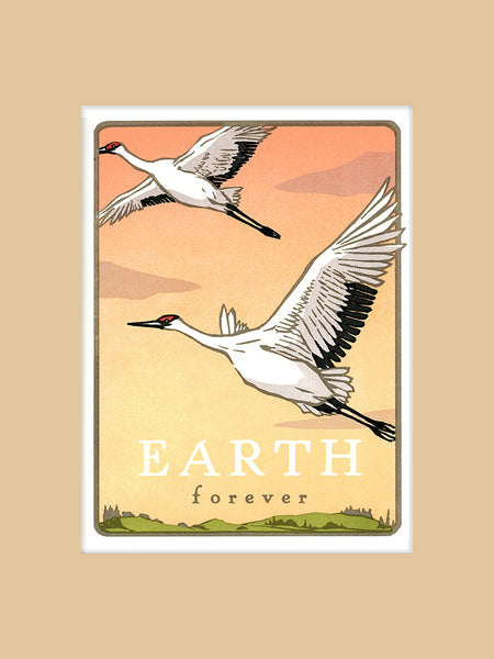 Whooping Crane - Earth Forever