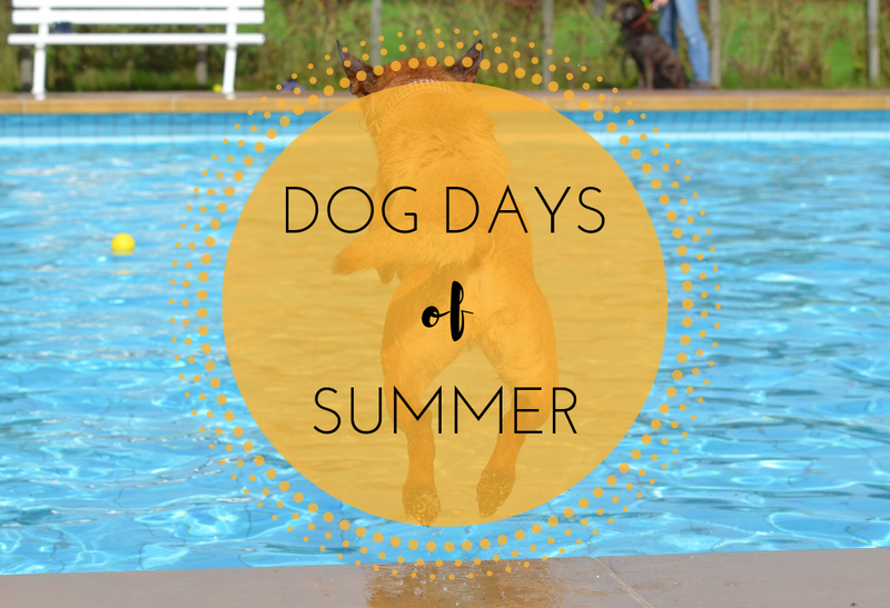 The Dog Days of Summer-Article & Thread Boutique