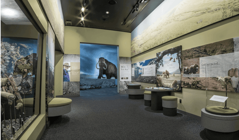 Royal BC Museum - Best Museum in Canada - Arts and Culture - AGOOA Jewelry - AGOOA Blog