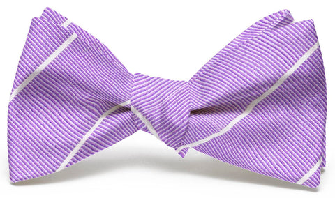Bird Dog Bay Sheffield Stripe Men's Bow Tie in Violet