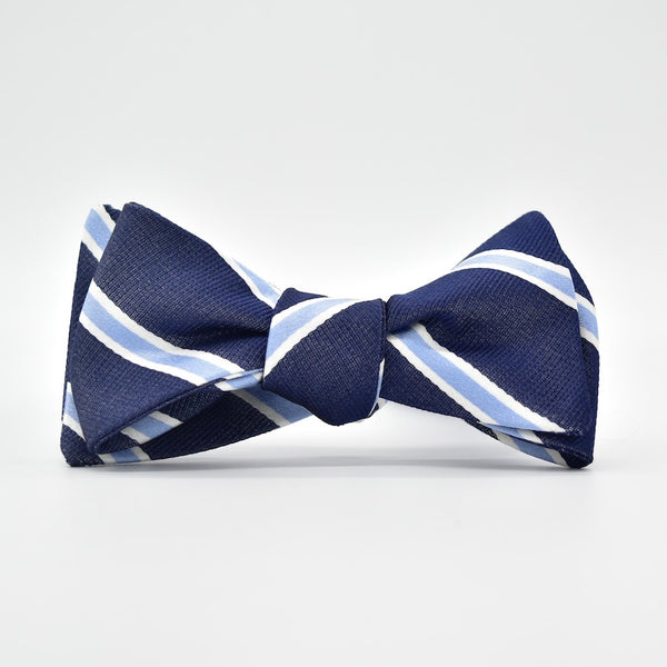 Bird Dog Bay James Bow Tie in Navy/Blue