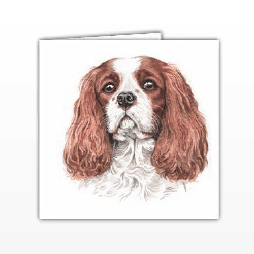 Cavalier King Charles Dog Greeting Card - by UK Artist Christine Varley's Original Watercolor painting