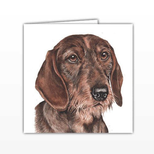 Dachshund Dog Greeting Card - by UK Artist Christine Varley's Original Watercolor painting