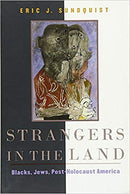 Strangers in the Land: Blacks, Jews, Post-Holocaust America by Eric Sundquist