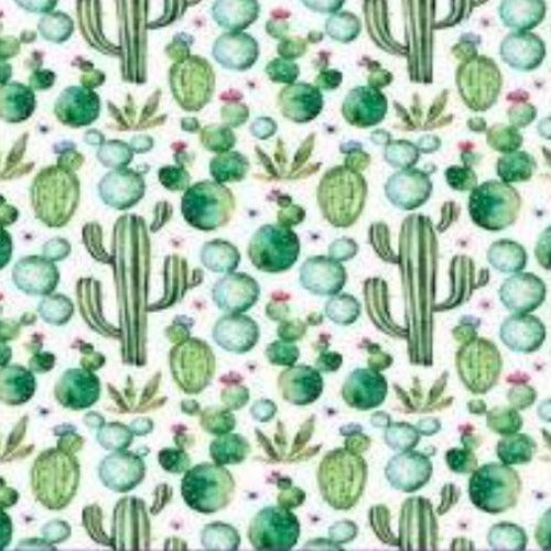 Super Soft Warm Colorful Cactus Print Blankets