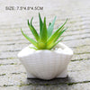Image of Ceramic Seashell Planter Set
