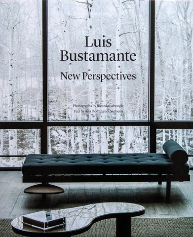 LUIS BUSTAMANTE. New Perspectives