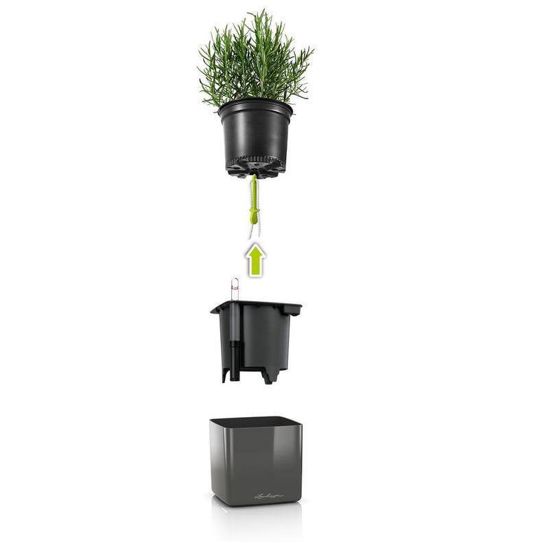 Wick watering system