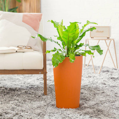 Lechuza Cilindro Self-watering Planter - Sunset Orange