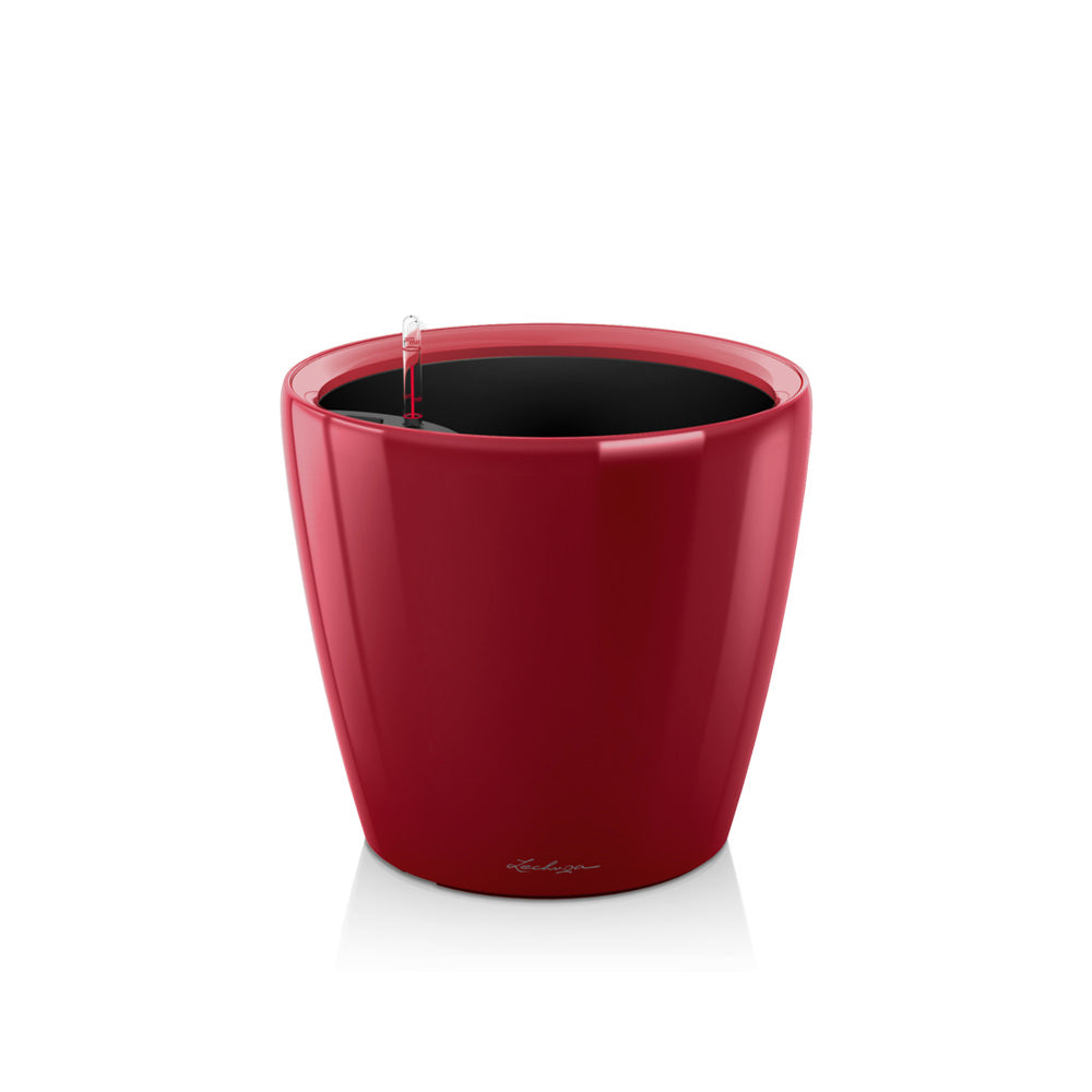 Lechuza Classico LS 21 - scarlet red - My City Plants
