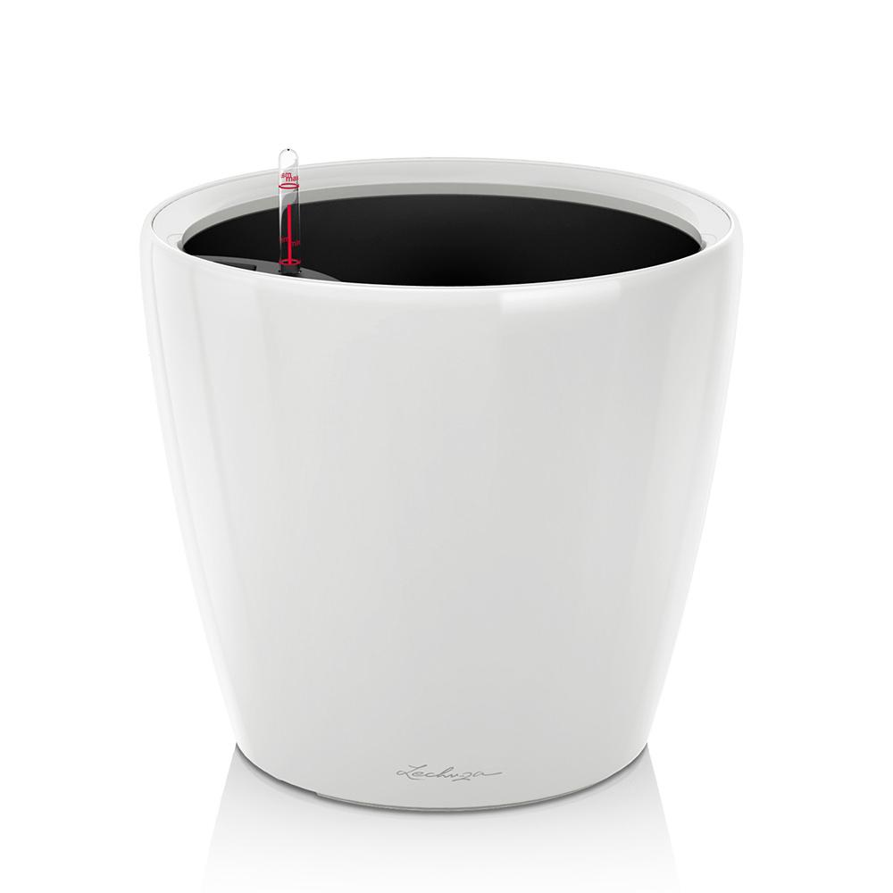 "Lechuza Classico 14"" Self-watering Planter - Shop Online - My City Plants"