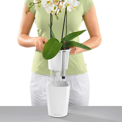 Lechuza Deltini Self-watering Planter - White