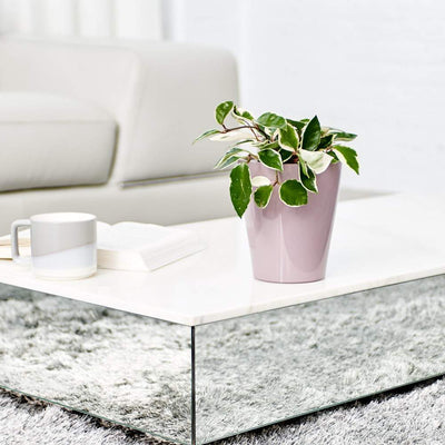 Lechuza Deltini Self-watering Planter - Violet