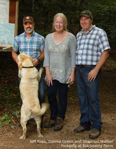 Connie Green with Jeff Ross and Shannon Walker of Blackberry Farm foraging for wild foods in The Great Smoky Mountains